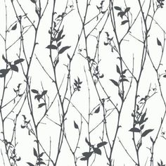 Brewster Home Fashions Wall Vision x Paloma Spring Tree Wallpaper Roll Color: Black