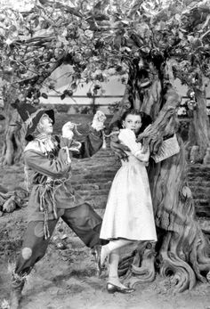 yellow brick road dorothy and the scarecrow in Wizard of Oz. Old Movies, Great Movies, Classic Hollywood, Old Hollywood, Hollywood Stars, Wizard Of Oz 1939, Cowardly Lion, Dorothy Gale, Land Of Oz