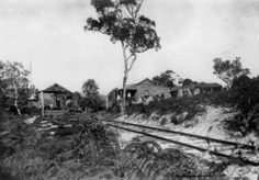 The Bogimbah Terminus railway line used for the timber industry on Fraser Island.