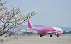 Peach Aviation