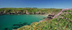 Caerfai Bay - Pembrokeshire