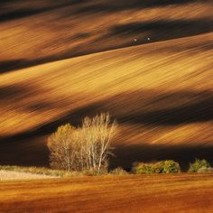 Moravian Fields, Czech Republic by Parvel Kucharski via frawsy.com