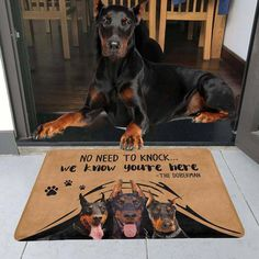No Need To Knock Doberman Doormat Doberman Funny, Doberman Love, Cute Dogs Breeds, Dog Breeds, European Doberman, Doberman Pinscher Dog, Handmade Dog Collars, Animal Nursery, Cute Funny Animals