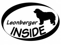 Hund Inside Auto AufkleberInside Aufkleber: Leonberger 1