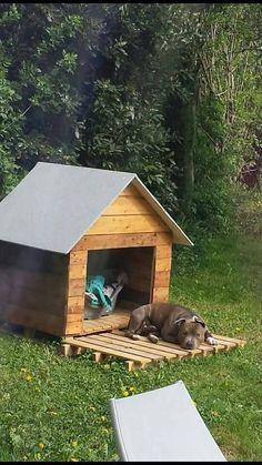 construire une niche pour chien en palette brico pinterest niche pour chien niche et. Black Bedroom Furniture Sets. Home Design Ideas