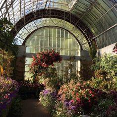 Image about aesthetic in flores y plantas by espejoses Deco Floral, Arte Floral, Magic Places, Plants Are Friends, Mother Nature, Planting Flowers, Beautiful Places, Scenery, Landscape