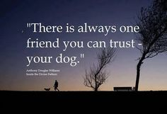 Thereis always one friend you can trust-your dog.-Anthony Douglas Williams -photo credit to the owner I Love Dogs, Puppy Love, Cute Dogs, Puppy Mix, Pomchi Puppies, Dogs And Puppies, Pomeranian Chihuahua, Yorkie, Animal Quotes