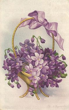 Basket Of Violets With Bow By Ellen H. Clapsaddle