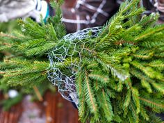 Havupallo - Kohti Joulua -joulublogi Outdoor Christmas Decorations, Outdoor Decor, Plants, Holidays, Bricolage, Christmas, Holidays Events, Holiday, Plant