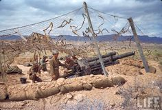 American gun crew in camouflaged emplacement awaiting orders to fire during the desert fighting between German and American forces in the El Guettar Valley. Location: El Guettar, Tunisia Date taken: 1943 Photographer: Eliot Elisofon Bernard Montgomery, Military Photos, Military History, Afrika Corps, Big Guns, North Africa, World War Two, Ww2, Images