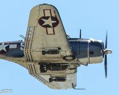 Douglas SBD-5 Dauntless (Bu 54532) (NL82GA)
