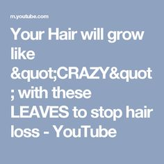 "Your Hair will grow like ""CRAZY"" with these LEAVES to stop hair loss - YouTube"