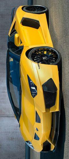 2015 Lamborghini Aventador Hamann Nervudo Roadster $520,000 by Levon