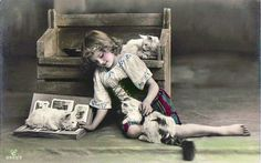 Grete, with cats and photograph album. Vintage photo postcard, 1910's
