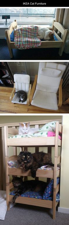 Ikea Cat Furniture - oh my! I love this. Going to add to the honey do list.
