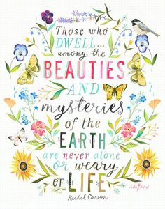 Beauties & Mysteries by Katie Daisy Art Mural Floral, Impression Grand Format, Daisy Art, Large Format Printing, Acrylic Artwork, Mothers Day Quotes, Flyer, Beautiful Words, Gorgeous Quotes