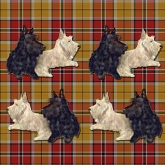 Bertie and Willie Scottie Stripe fabric by eclectic_house on Spoonflower - custom fabric