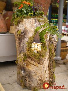 Staré kmene stromov premenili na úžasné kúsky. Inšpirujte sa krásnymi nápadmi šikovných ľudí, ktoré môžete vyskúšať aj vy!