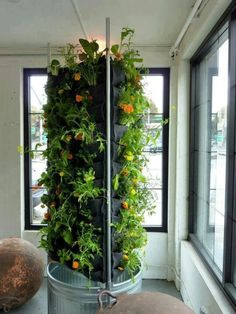 Productive Verticals for Small Space Harvests This vertical garden is something we can all do ourselves. I love how it is placed between ci...