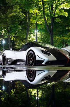 Pagani Zonda Cirque  Got a successful online global business?  Need a better electronic payment strategy?  Contact lburrell@aramorpayments.com for competitive mid-high risk global credit card and debit card processing solutions.