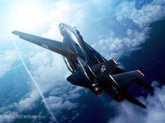 Ace Combat 5 - Ghosts of Razgriz F-14