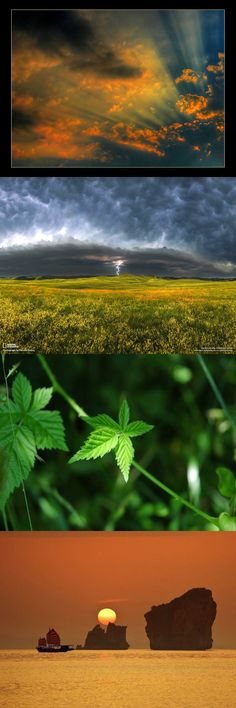 Nature Iran, Northern Lights, Nature, Travel, Naturaleza, Viajes, Destinations, Nordic Lights, Aurora Borealis