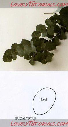 Eucalyptus tutorial gumpaste flower tutorial