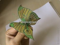 HOW TO MAKECOLOURFUL BUTTERFLIES ~ Crazzy Craft