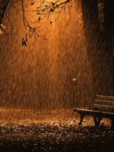 I love fall rain.
