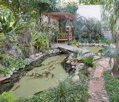Feng Shui Garden Design Ideas That Will Create Positive Energy Tall Flowers, Colorful Flowers, Feng Shui Garden Design, Zinnia Elegans, How To Grow Taller, Delphinium, Zinnias, Growing Plants, Flower Beds