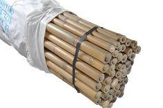 Bambou tuteurs (divers longueurs et diamètres)