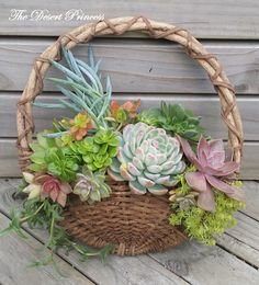 This weekend's project is a wall hung basket that's brimming with succulents. A great way to put some life to a dreary wall or add some charm to a nondescript area in your house.