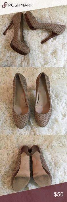 STUNNING Calvin Klein Nude Embossed Kendall Heels These are AMAZING and they will never go out of style. They're in near perfect condition!! No major signs of wear or flaws. They're so perfect for work or play! NO TRADES PLEASE Calvin Klein Shoes Heels