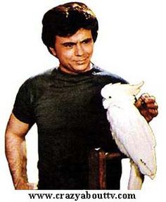 Detective Tony Baretta (Robert Blake)  Baretta was a 60 minute drama series on ABC about a cocky, street-wise, undercover New York city cop. He'd always get in trouble for breaking any rule necessary to bring in a criminal.