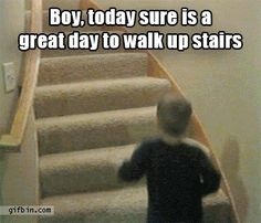 Today Sure Is A Great Day To Walk Upstairs...