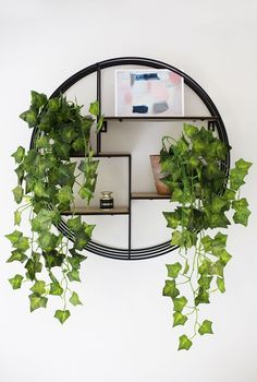 Wall Plant Decor boho chic in a jersey high-rise | shelves, decorating and plants