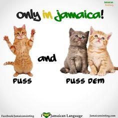Puss & Puss dem