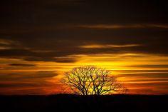 2012 | Flickr - Photo Sharing!