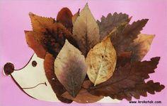 Löv igelkott