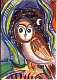 Owly Owley Night!
