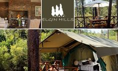 Daddy's Deals — An Overnight Stay at Elgin Hills Luxury Tented Camp Camping In Washington State, Minnesota Camping, Camping Resort, Tent Camping, Lake George Camping, Death Valley Camping, Camping In The Rain, Luxury Tents, Cape Town
