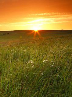 Midwest sun
