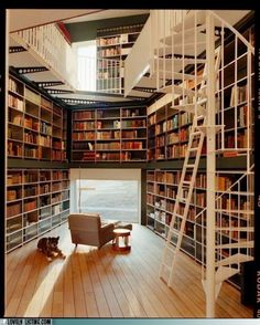 Your daily bookcase.