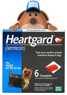 Heartgard Q & A: Everything You Ever Wanted to Know About Heartgard/Plus | TatoChip