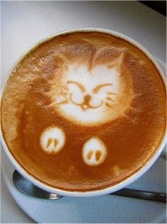 Satisfied coffee cat
