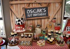 Rustic Barnyard Party