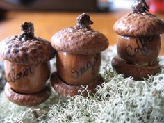 Fairy House  Acorn Canister Set Fairy World by CoyoteWoodWorks