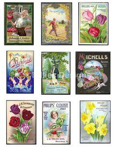 Digital Download Vintage Seed Packet Catalogs Flower Vegetable Seed Package…