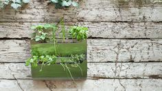 Shift Cedar Herb Garden by shiftspacedesign.com: Maybe an inspiration for a DIY with stackable office wall pockets? #Planter #shiftspacedesign