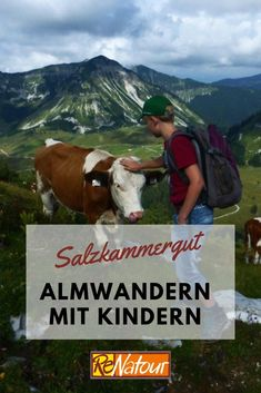Goats, Bucket, Animals, Hiking With Kids, Mountain Landscape, Mountain Climbing, Family Vacations, Destinations, Animales